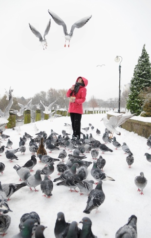 Feeding hungry birds in the snow.